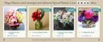 BloomNation-homepage
