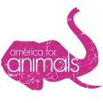 America-for-animals-logo-