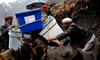 Afghans load ballot boxes and election material on a donkey to transport it to polling stations