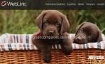 WebLinc-homepage