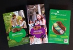 Girl-Scouts-cookies-inovasicom